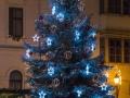 Sopron_Hauptplatz_Tanne