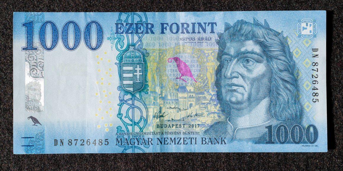 euro forint umrechner