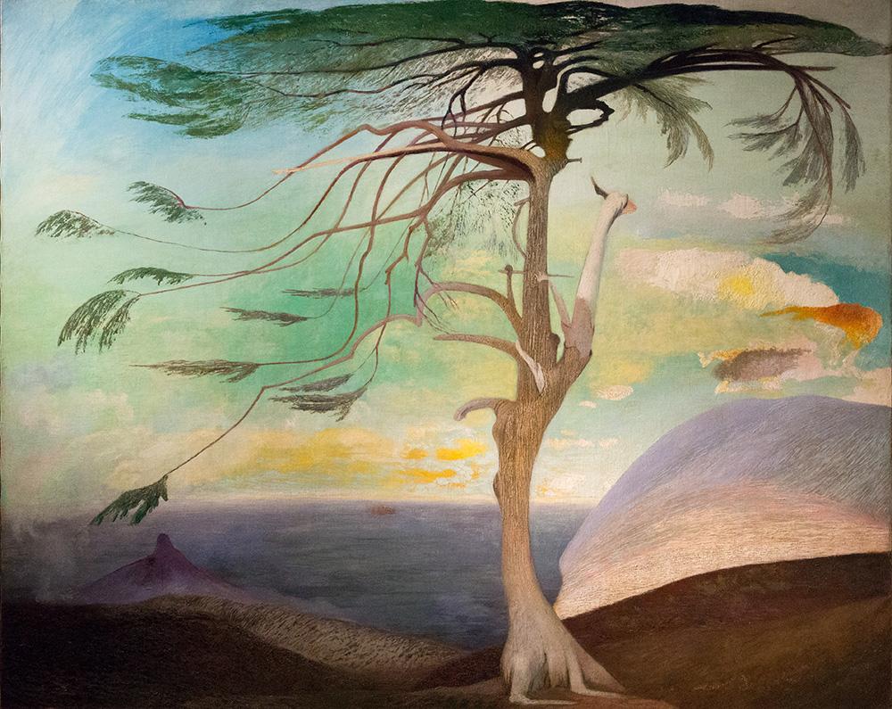 Einsame Zeder (1907)