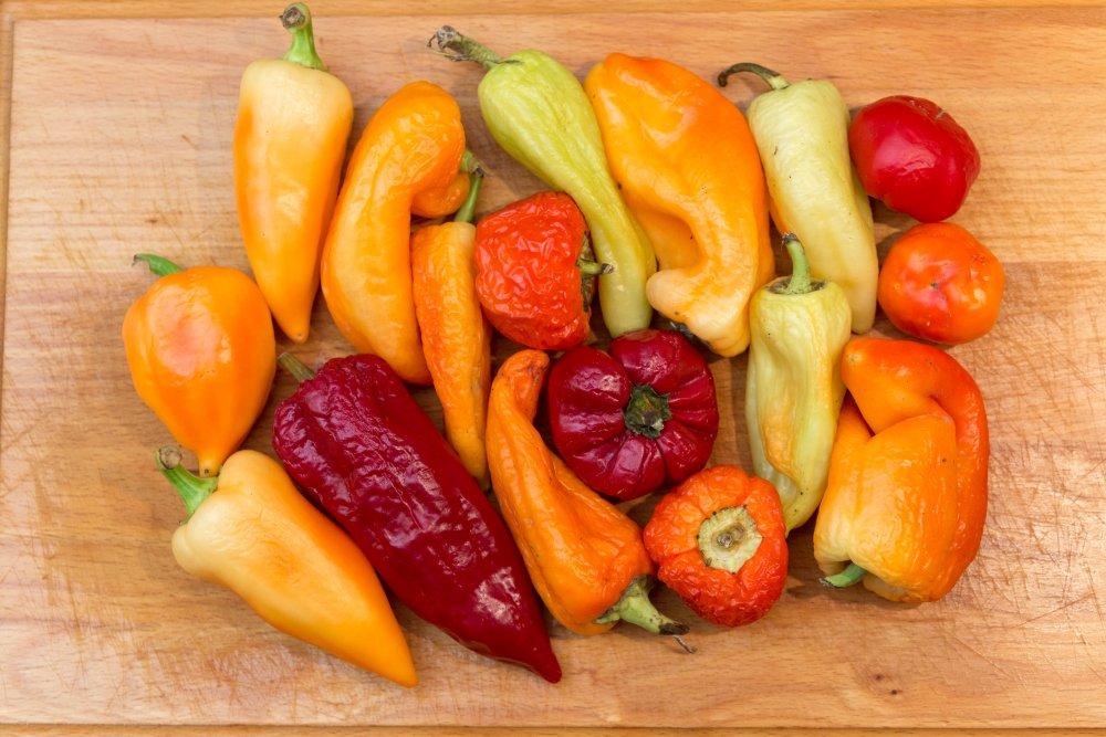 Letscho (Lecso) paprika