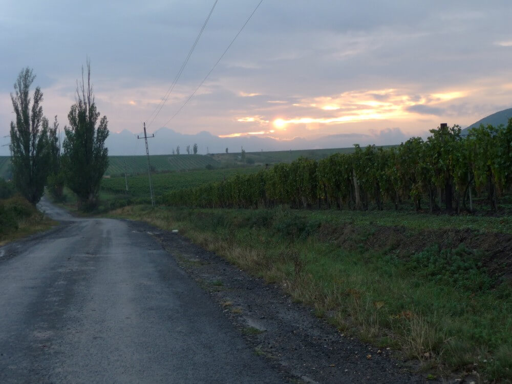 Straße von Tolcsva nach Erdöbenye