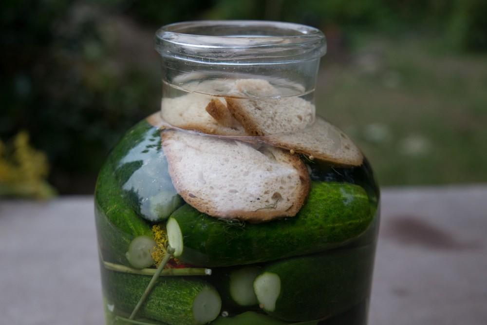 Salzgurkenglas mit Brot abgedeckt