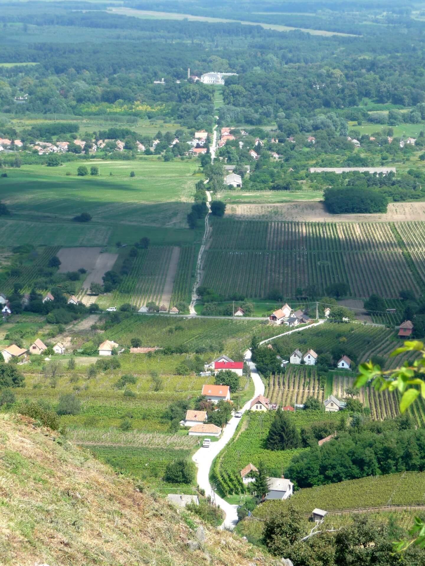 Blick von Burg Somló übe Doba