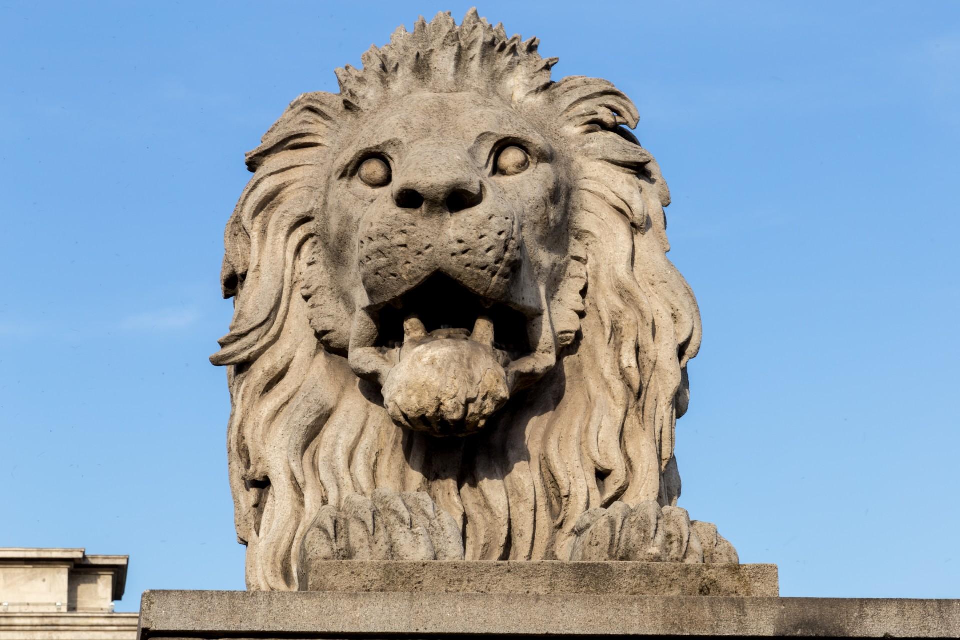 Löwe der Kettenbrücke Budapest