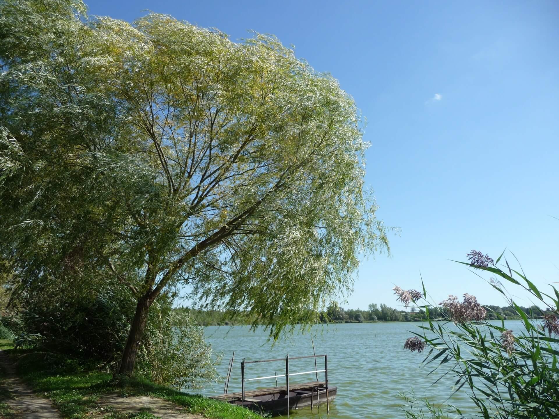 Holt-Duna Bogyiszló