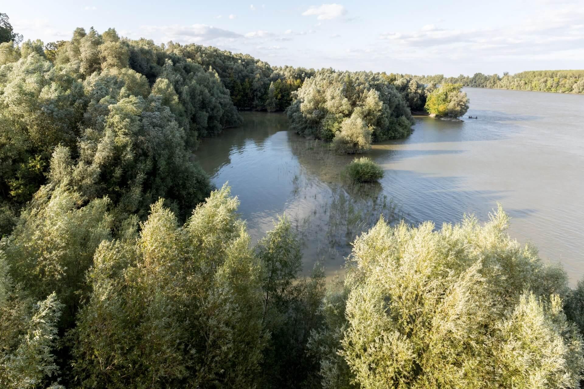 Donauufer bei Szent László híd