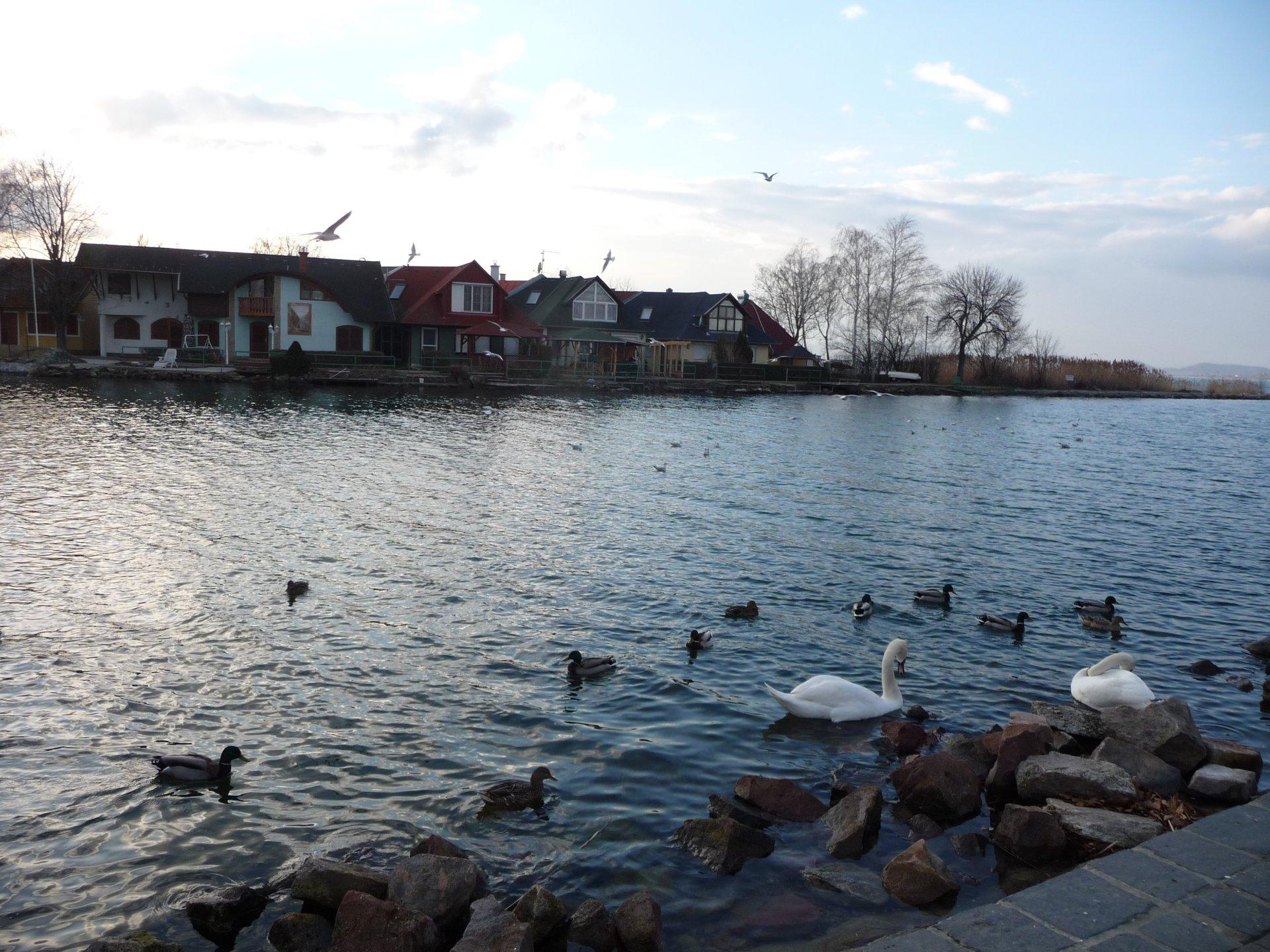 Hafen Fonyód